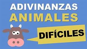 Adivinanzas de animales difíciles TOP 10 YouTube