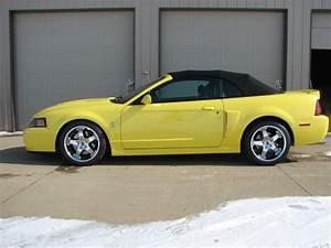 03 Yellow Cobra Convertible For Sale | SVTPerformance.com