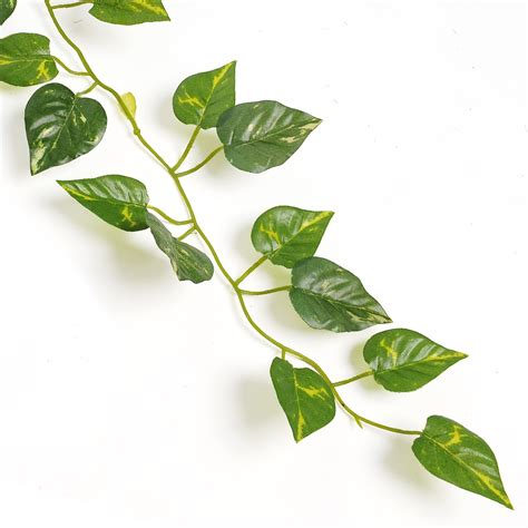 New Delightful Natural Artificial Ivy Leaves Garland Vine. Gold Inlay Rings. Novelty Rings. Western Rings. Wedding Ring Set Engagement Rings. True Miracle Wedding Rings. Uc Davis Rings. Rich Man Engagement Rings. Fish Hook Wedding Rings