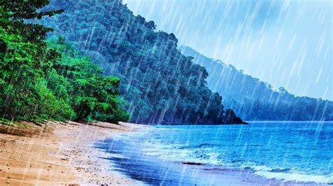 rain  beach white noise tropical rainstorm ocean