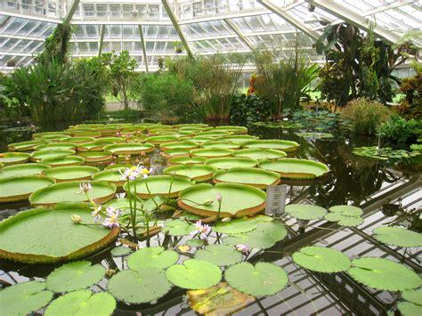 national botanical gardens file national botanic garden of belgium meise img 4379