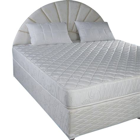 Box Bed by Buy Box Bed Base Springwel In India Best