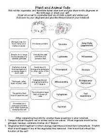 Plant and Animal Cell Organelles Worksheet