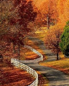 17 Best images about Autumn on Pinterest   Autumn tea ...