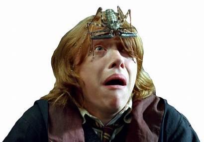 Weasley Ron Transparent Clip