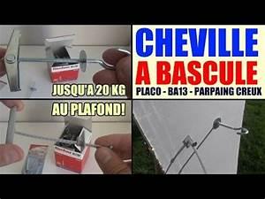 Cheville Parpaing Creux Charge Lourde : cheville a bascule charges lourdes placo ba13 ba16 ba ~ Melissatoandfro.com Idées de Décoration