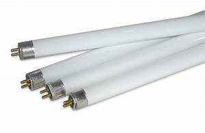 Related keywords suggestions for t5 bulb for T lamp light bulbs