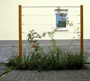 Immergrüne Kletterpflanze Für Zaun : rankhilfe edelstahl rankgitter set oder einzelteile ~ Michelbontemps.com Haus und Dekorationen