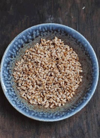Grain Bowl Nuts Avocado Pickled Veggies Build