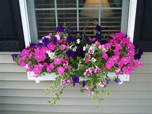 Blumenkästen Mit Bewässerung : blumenk sten am fenster in unterschiedlichem stil ~ Lizthompson.info Haus und Dekorationen