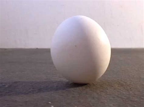 Don't Believe The Myth About Eggs On The Spring Equinox
