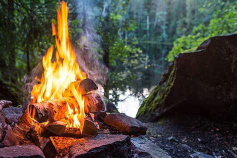 campfire stock  pictures royalty  images
