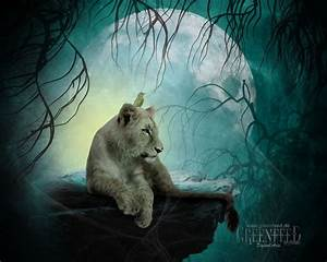 224 best images about Cats In Fantasy Art on Pinterest