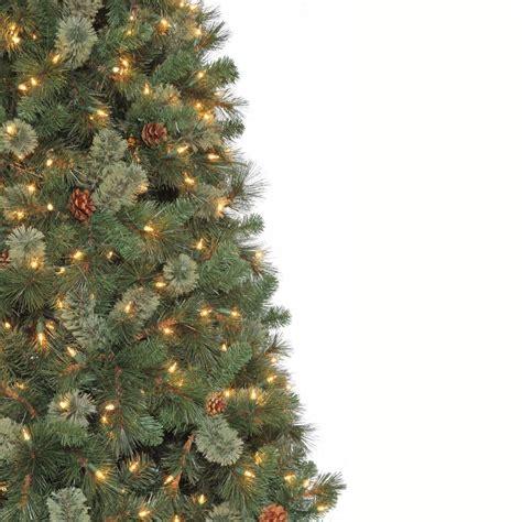 martha stewart christmas trees martha stewart living 9 ft pine set
