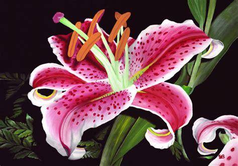 stargazer lily visarts