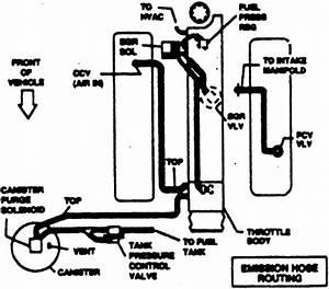 C4 Lt1 Corvette Vacuum Diagrams