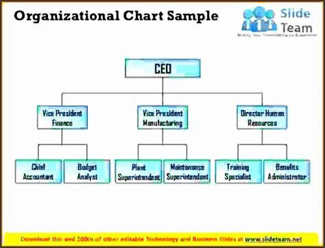 organizational chart sample sampletemplatess