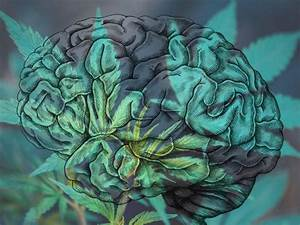 Can Cannabis Provide Immediate Relief From Depressive