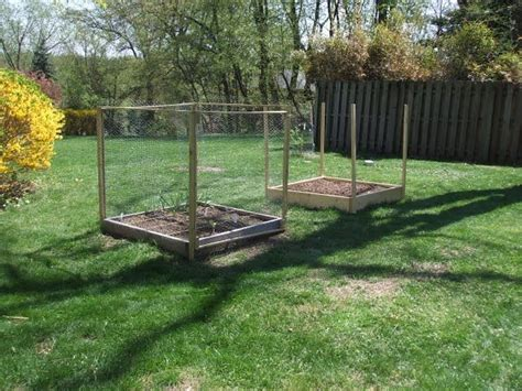 deer proof garden 240 best images about deer proof garden on pinterest