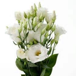 wedding floral arrangements white lisianthus melody floral recipe flowers