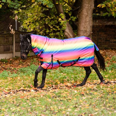 horse rug rugs turnout pony stable outdoor winter waterproof neck combo heavyweight riding 300g rainbow rain print funky equestrian yard