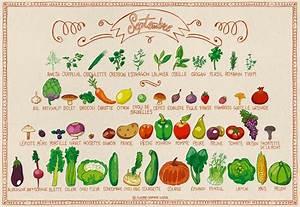 Fruits De Septembre : calendrier des fruits l gumes de septembre par pissenlit au jardin biobeaubon bien tre ~ Melissatoandfro.com Idées de Décoration