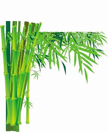 Bamboo Transparent Clipart Plum Clip Blossom Trees
