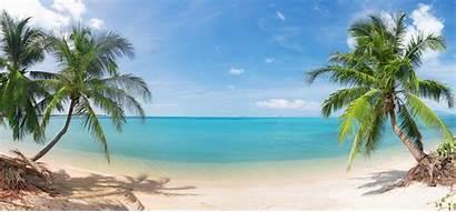 Palm Tropical Beach Trees Coconut Landscape Sky