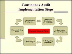 Internal Audit Process Steps