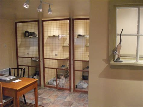 The Valley Cat Hotel  Top Quality Cat Boarding Kennel
