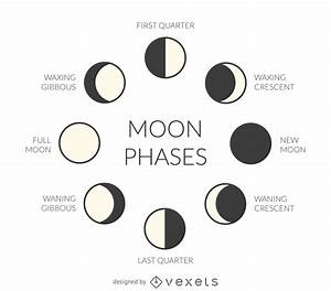 Illustrated Moon Phases