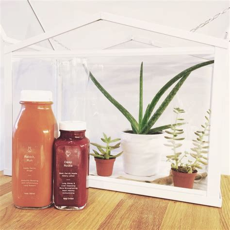 Online menus from coffeeshop greenhouse in amsterdam netherlands. Greenhouse Juice Co. toronto juices with my terrarium   Starbucks iced coffee bottle, Coffee ...