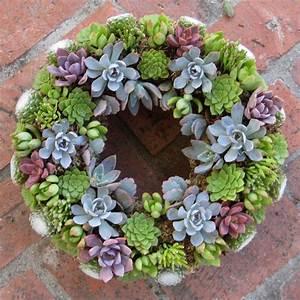 Succulent Wreaths bluelfsucculents