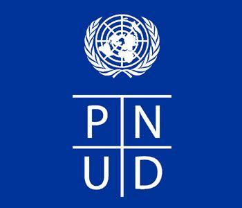logo le de bureau le bureau du pnud tunisie recrute des experts nationaux