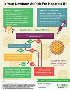 Focus for Health- Your Newborn & the Hepatitis B Vaccine Hepatitis A and Hepatitis B Vaccine