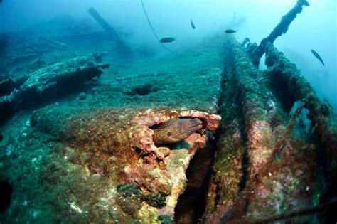 Mares Dive Mares Dive Organizer 2 7 Idiving De