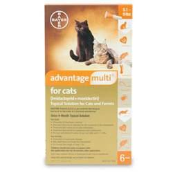 advantage cats advantage multi for cats revival animal health