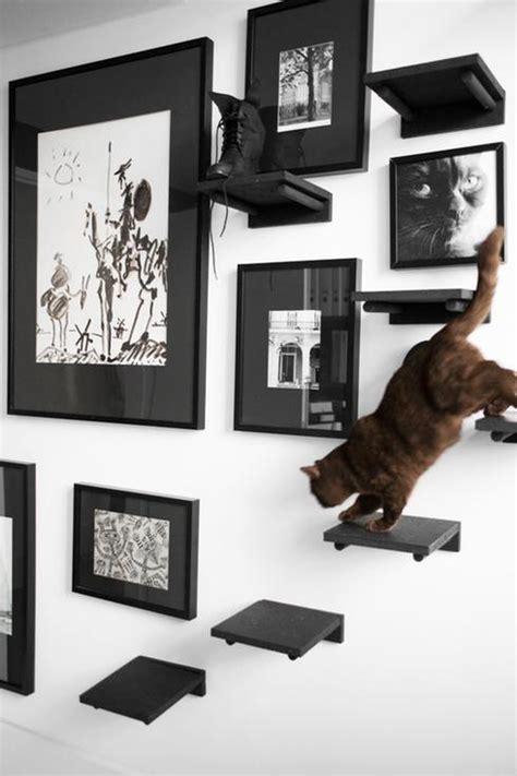 10 projets diy que votre chat va adorer