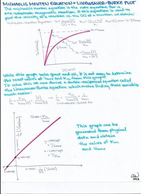 biochemistry study guides study guides study  equation