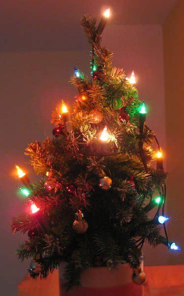 free stock photos rgbstock free stock images tiny christmas tree ayla87 december 25