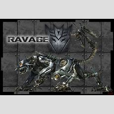 Ravager  Définition  What Is