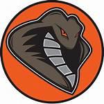Clipart Cobra Baseball Mascot Snake Football Snakes