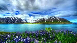 Nature, Beautiful, Hd, Wallpaper, Mountain, Lake, Flowers, Sky