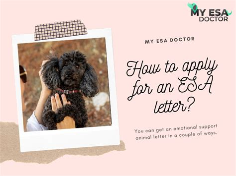 Find out about ways to join us, get to at esa, we recruit professionals and experts in engineering, science, it, finance, law, hr, communication. You can get an emotional support animal letter in a couple ...