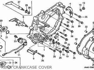 2001 Trx 350 Engine Diagram : honda trx350fm fourtrax 2001 1 australia parts lists and ~ A.2002-acura-tl-radio.info Haus und Dekorationen