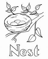 Coloring Nest Printable Bird Drawing Birds Colouring Tree Pre Simple Template Alphabet Activity Sketch Sheet Popular Sheets Coloringhome sketch template