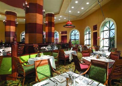 Delfinos Hammock by Best 25 Hammock Ideas On Resorts