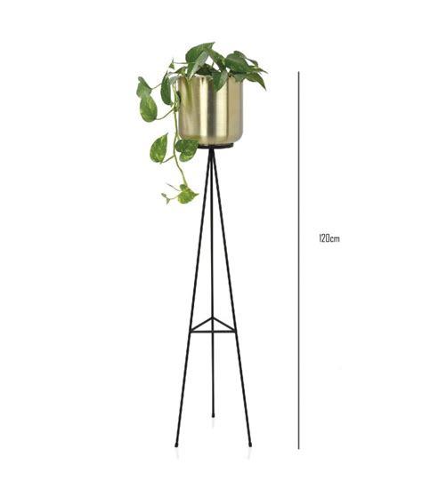 Cache Pot Sur Pied Cache Pot Sur Pied En M 233 Tal Noir Et Laiton Dor 233 Hauteur 120cm