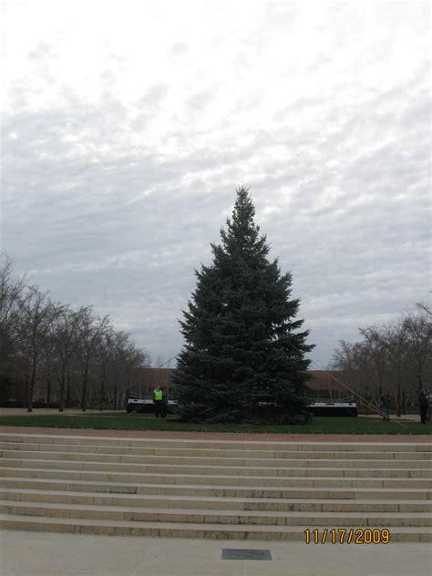best 28 green acres christmas tree farm christmas
