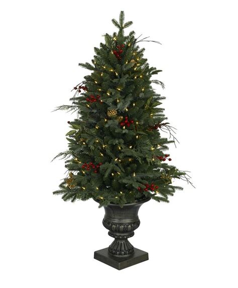 catchy collections of sherwood pines christmas trees if